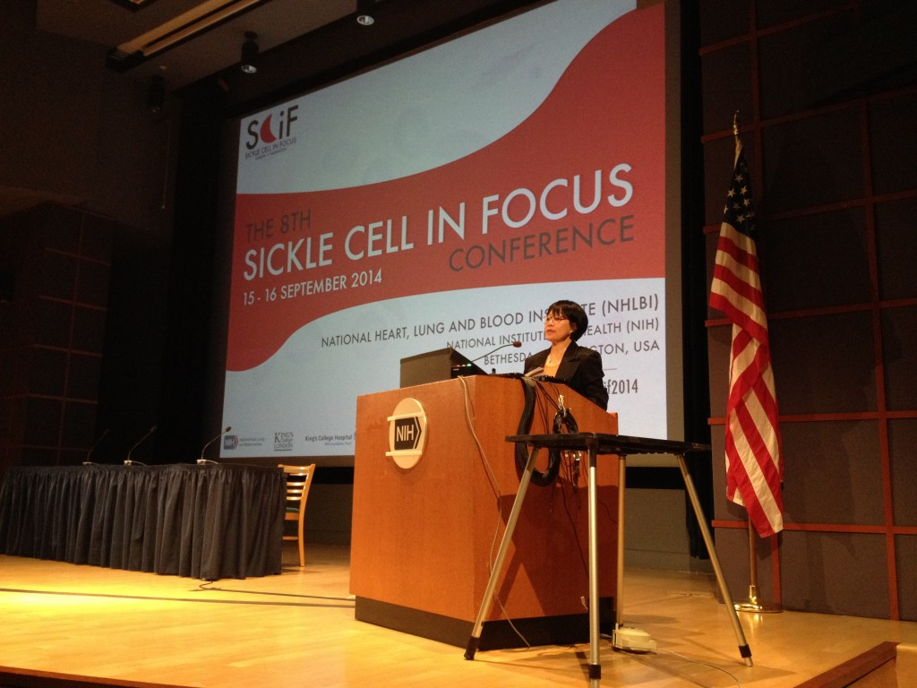 Professor Swee Lay Thein at Sickle Cell in Focus 2014